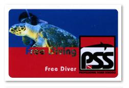 Brevetto Free Diver.jpg